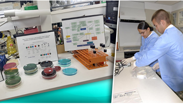Pictured GEIS laboratory scientists and the enteric infections surveillance work they do.