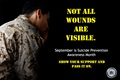 Not all Wounds are Visible