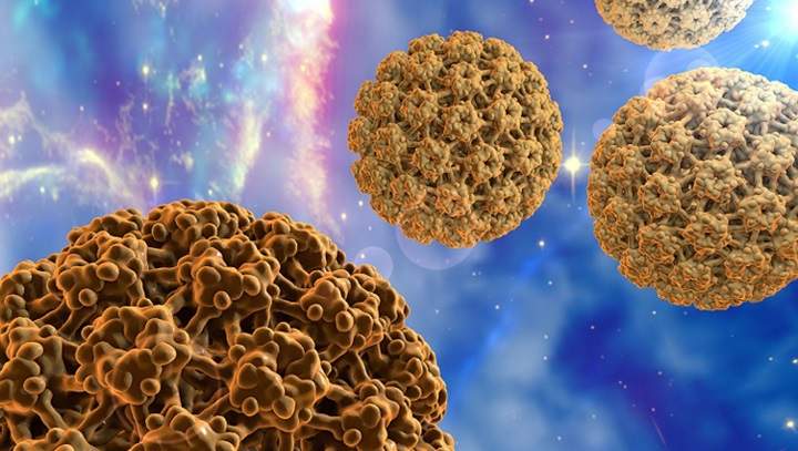 https://www.nfid.org/infectious-diseases/hpv/ Recent CDC and FDA guidance recommends that men and women up to 45 years of age get vaccinated to protect against the Human papillomavirus (HPV). HPV is the most common sexually transmitted infection and can cause certain cancers and genital warts. More than 14 million new HPV infections occur in the U.S. each year, and about 80 percent of sexually active men and women are infected with HPV at some point in their lives. (National Foundation for Infectious Diseases image)